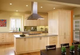 Peninsula Kitchen Cabinets Kitchen Peninsulas Save Space Kitchen Design Tips