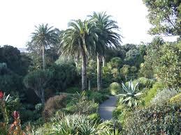 tresco abbey gardens wikipedia