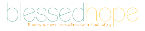 Devotions For Baby Shower - blessed hope a baby shower devotional