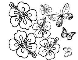 imagenes de mariposas faciles para dibujar dibujos de flores para pintar y colorear