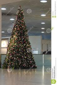 large christmas tree editorial photo image 48137341