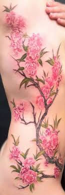 collection of 25 cherry blossom on side