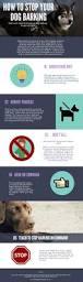 how to get dog to stop barking 5 tips to stop your dog barking elitedogtrainingadvice com