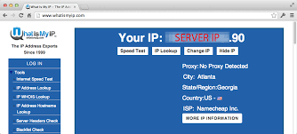 what is my up squid how can google see my ip address despite squid3 proxy