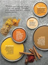 100 spicy orange paint color color shades with color