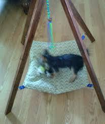 hanging teepee pet hammock w toy cat bed small dog hammock