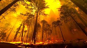 Wildfire Yosemite 2013 by Yosemite Forest Fire Time Lapse And Flyover Youtube