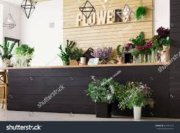 modern planters and pots small business modern flower shop interior stock photo 631414112