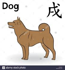 chinese zodiac sign dog in brown color symbol of new year on the