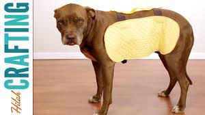 how to make a halloween costume for your dog hilah crafting