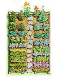 vegetable garden layout easy children s vegetable garden plan better homes gardens