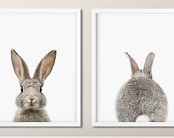 rabbit rabbit nursery rabbit etsy