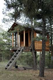 Simple Backyard Tree Houses by 258 Best Tree Houses Images On Pinterest Treehouses Tree Forts