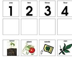 23 best speech therapy planting images on pinterest science