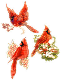 cardinal bird drawings 2010 cardinal christmas tags by vslynx