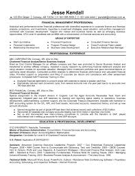 Resume Samples For Executives financial resume samples