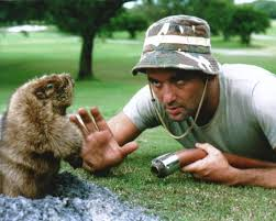 Carl Spackler Meme - bill murray is opening a caddyshack themed bar in chicago upout blog