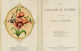 The Language Of Flowers Floriography And The Language Of Flowers Gloomth U0026 The Cult Of