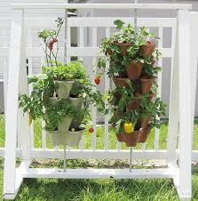 best planters the 5 best planters for vegetables and fruits