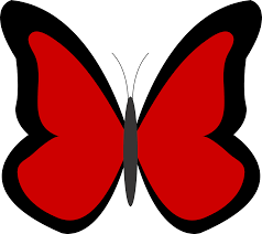 top 81 butterfly clipart free clipart image