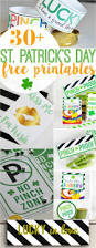 Shamrock Decorations Home 248 Best St Patrick U0027s Day Images On Pinterest St Patricks Day