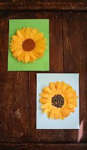 coffee filter sunflowers a fun sunflower craft for kids