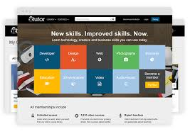Online Tutorial Like Lynda   what is the best platform to build an online learning site like