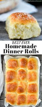 best 25 dinner rolls ideas on rolls