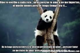 Memes De Pandas - memes de panda dormilon galeria 27 imagenes graciosas