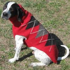 clothing sweaters coats for dogs shirts dresses