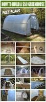 construction d une serre de jardin en bois the 25 best serre pour jardin ideas on pinterest serre de diy