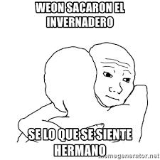 I Know That Feel Bro Meme - weon sacaron el invernadero se lo que se siente hermano i know
