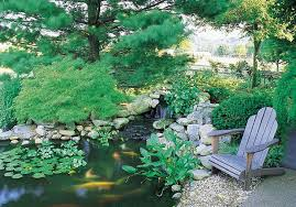 How To Build A Fish Pond In Your Backyard Build A Backyard Fish Pond Without Going Belly Up