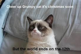Soon Cat Meme - hate the holidays with the grumpy cat internet meme socialeyezer