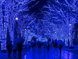 cheapest place to buy christmas lights where to see the world s best christmas lights condé nast traveler