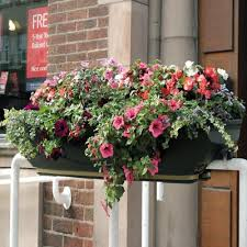 fullbloom self watering rail mounted planters by glasdon