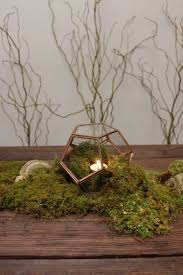 best 25 moss centerpiece wedding ideas on pinterest moss