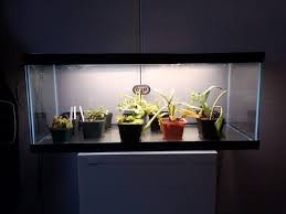 led strip light photography led strip light indoor grow1 birddog lighting blog
