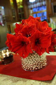11 best ps wedding flowers images on pinterest red carnation