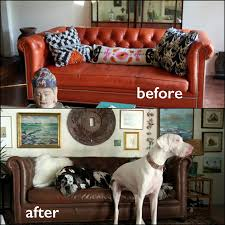 How To Dye Leather Sofa Walnut Leather Furniture Dye Vinyl Dye Pictures Reviews