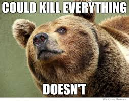could kill everything doesn t funny bear meme picture