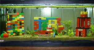Aquarium Decoration Ideas Freshwater Unique Design Of The Fresh Water Sand Tank Ideas That Has Modern