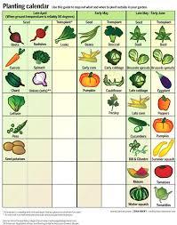 Fruit And Vegetable Garden Layout Wisconsin Vegetable Garden Layouts State Extension Block Gardening