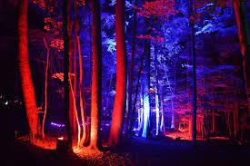 story lights lights hq