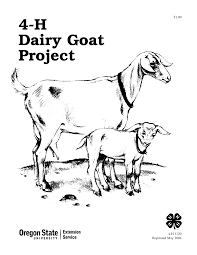 6 images of nubian goat coloring pages dairy goat coloring pages