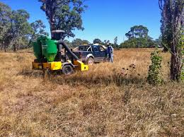 planting native grass seed native grass seed harvesting day a great success another