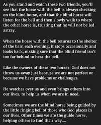 Blind Story This Man Never Expected To Learn From A Blind Horse U2013 Petsfans