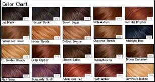 shades of red list pictures red hair color chart black hairstle picture