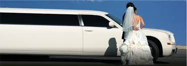 best limos in the world best limo service calgary calgary limo limo lush inc