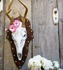 deer skull mounted on european wood home decor u0026 lighting city